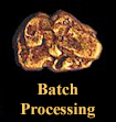 Assay Batch Processing